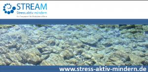 Stress_Aktiv_Mindern_FOLIE_WEB