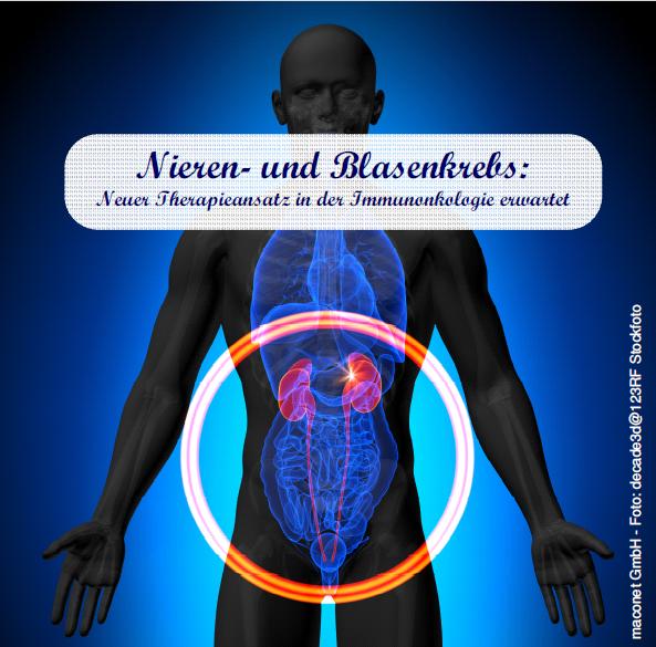 160302 Nieren u Blasenkrebs_Immunonkologie